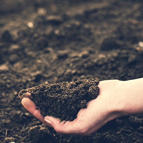 Keeping Compost on Track
